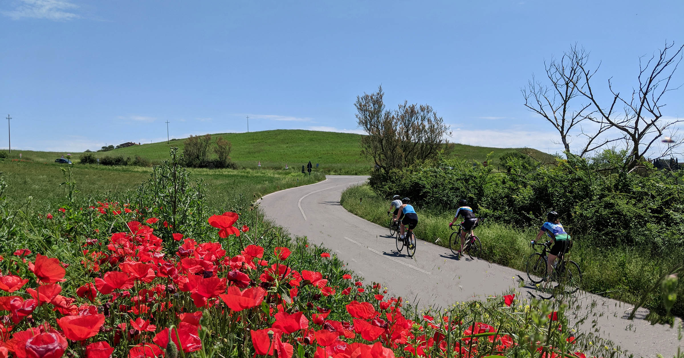Italy Cycling Trips in 2020 - Tuscany Bike Vacation